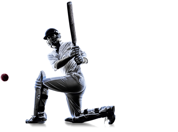 cricketer in silhouette